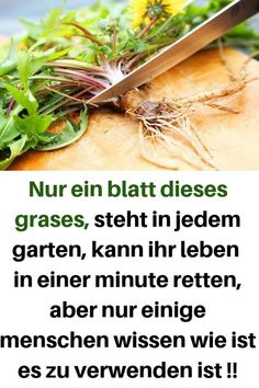 Just one leaf of this grass, standing in every garden, can live your life in a minu … – Health Fitness Nutrition, Fitness Tips, Nutrition Guide, Health Care Reform, Beauty Tips For Women, Natural Health Tips, Natural Home Remedies, Hair Health, Easy Workouts