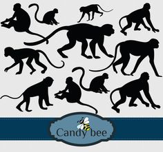 This Monkey Digital Clipart will be a perfect match to do monkey cartoon designs, cartoon characters, animal graphics, forest illustrations etc. Silhouette Clip Art, Forest Illustration, Bee Design, Vector Clipart, Cartoon Design, Stories For Kids, Animal Design, Vector Design, Cartoon Characters
