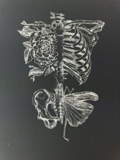 drawing art Black and White creepy Grunge dark flowers skull punk butterfly skeleton bones Alternative darkness goth emo artsy gothic