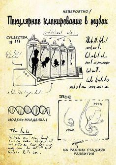 Страницы 2 дневника Gravity Falls Journal, Desenhos Gravity Falls, Falling Down, Futuristic, Mystery, Witch, Bill Cipher, Mushroom Art, Runes