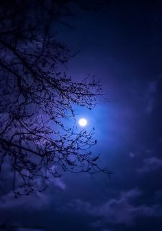 "mistymorningme: ""Glow by mistymorningme Beautiful Moon Pictures, Nature Pictures, Image Nature, Moon Images, Moon Shadow, Moon Photography, Moon Art, Blue Moon, Belle Photo"