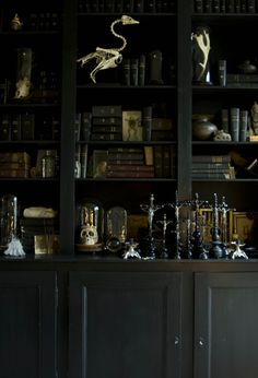 On a trip to Belgium and Antwerp... a hotel on Boulevard Leopold, where the decoration is old-world—full of charm and elegance. In the vast black library is a universe of skeletons and skulls, all kinds; glass; an accumulation of crucifix bells...