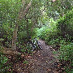 Birch Park. Lauderdale.