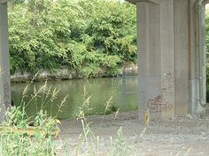 I & M Canal,  a one time home of many dumped cars and a body or two. The location listed here is the place to park and then walk over to the canal area. Do not trespass.