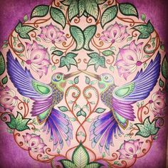 So o colored in the background on this one...#coloring_masterpieces #johannabasford #secretgarden #gamsol #adultcoloringbook