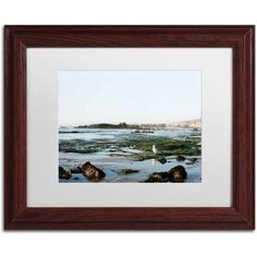 Trademark Fine Art 'Seagull Low Tide' Canvas Art by Ariane Moshayedi, White Matte, Wood Frame, Size: 16 x 20, Multicolor