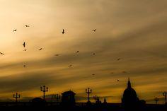 Photograph London Yellow Sunset. by Kobi Balulu on 500px