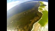 clipperton islands - YouTube