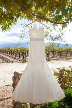strapless wedding dress with beaded belt, hangs from tree branch with vineyard in the background photo credit: www.frenzelstudios.com A Lovely Fall Wedding at the Ponte Winery in Temecula {Lauren   Adam}