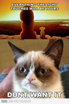 Everything the light touches will be yours...