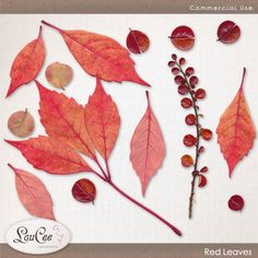 Red Leaves by #LouCee Creations.  #sugarhillco