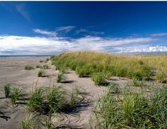 Retirement (#ocean #park #washington)