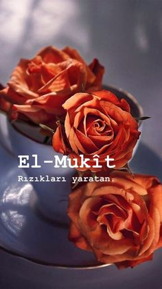 Allah Islam, Words Worth, Islamic Quotes, Argo, Beautiful Roses, Bonito, Islamic Decor, Handsome Quotes, Banana