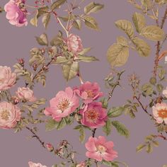 English Rose ~  Prince Regent  fabric by peacoquettedesigns on Spoonflower - custom fabric