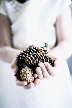 C'est bientôt Noël   Pommes de pin  Kristina - Love Peace Pionies