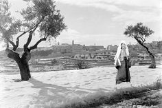 Bethlehem - بيت لحم : Women of Bethlehem 58 (Bethlehem snow, 1930s - Munir Alawi)