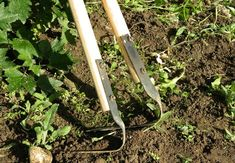 Farm Tools, Garden Tools, Summer House Garden, Home And Garden, Vegetables, Solar, Ideas, Agriculture, Vegetable Gardening