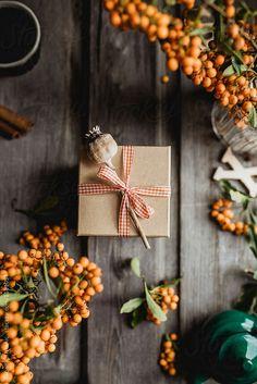 Christmas decoration by Tatjana Ristanic for Stocksy United