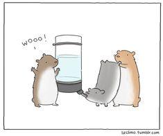 funny animal comics by liz climo (1)