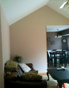Living room paint.