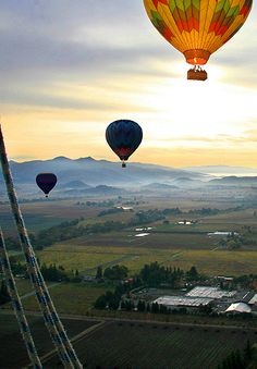 Hot Air Balloon rides over the vineyards