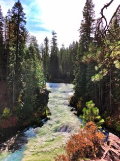 Bend Itinerary w/ hiking, breweries, and LOGE Camps: perfect Oregon Bend, Central Oregon, Water Bending, Travel Planner, Trip Planner, Tall Ships, National Forest, Logs