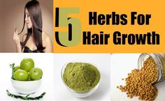 Hair adds charm and beauty to your whole personality. People with less hair growth find solutions in artificial hair, wigs and costly treatment like hair ...