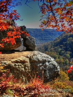A vista of the Boxley valley from Whitaker Point area in Arkansas