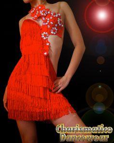 Latin Ballroom Dance Dresses   ... Custom Red Samba Cha Cha Fringe Crystal Salsa Latin Dance Dress   eBay