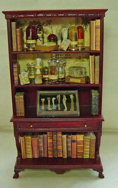 UNIQUE MINIATURES - MUSEUM ARTIFACTS (specimen's, old books)