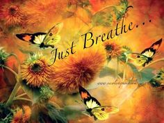 Just breathe at ease with the breeze. Self Healing Quotes, Religion, Rainbow Butterfly, Color Harmony, Breath In Breath Out, Just Breathe, Spiritual Awakening, Green And Orange, Mother Earth