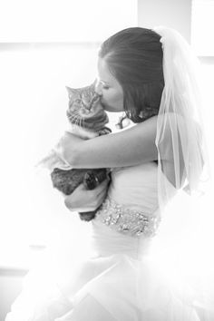 """Cat Kisses 