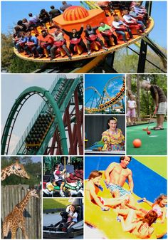 Wild Adventures is fun for the entire family!