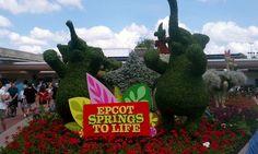 Epcot's Flower & Garden Show 2012 at Walt Disney World Resort