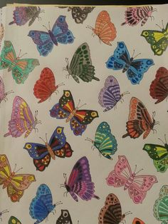 Animal Wonders Color Art