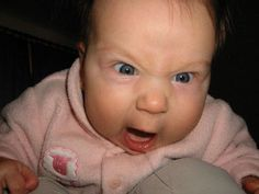 Check 20 funny baby memes that are adorably cute. Who doesn't love a good baby meme. They laugh, they cry, they poop their pants, all in the service of your laughter. Funny Baby Faces, Funny Babies, Funny Kids, Ot Memes, Baby Memes, Baby Humor, Funny Facial Expressions, Angry Baby, Baby Name Game