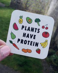 Vegan Sticker - Plants Have Protein, What Vegans Eat, Vegan Food, Dairy Free, Vegan Stickers, Vegan Accessories, Vegan Gift, Laptop Stickers Best Vegan Protein, Vegetarian Protein, Protein Diets, Protein Sources, Vegetarian Meals, Vegan Shopping, Recipes For Beginners, Vegan Lifestyle, Motivation