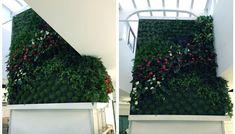 Parete verde presso Re Crema - centro commerciale Universo - Silvi
