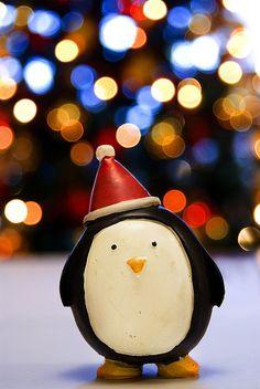 tiny christmas penguin