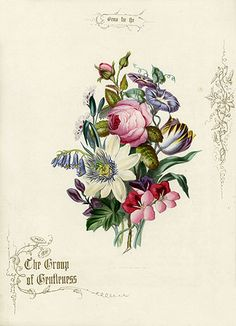 Jerrard Gems for the Drawing Room 1852. I would love this as a tattoo