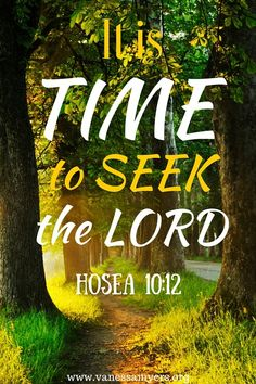 Do you want to hear from the Lord? Then seek Him! Join me on this journey of seeking the Lord. Prayer Verses, Bible Verses, Scripture Quotes, God Jesus, Lord And Savior, Bible Quotes About Faith, Plan Of Salvation, Bible Resources
