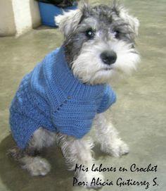 Suéter Mascotas, Tejidos Mascotas, Ropa Perritos, Solo Perritos, Accesorios Pettys, Accesorios Mascotas, Crochet Para Mascotas, Collares Para Mascotas,