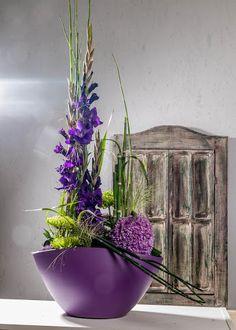 Die Blumenmönche – Google+