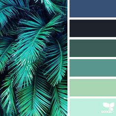 Love these #colours