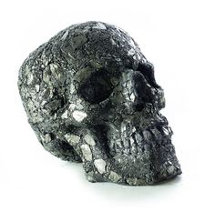 "Vladimir Anselm, ""Lion Skull"", coal, variable dimensions. Courtesy of the artist & Oneiro gallery"