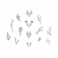 stick 'n poke floral designs                              …