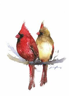 Cardinal couple bird art print featuring the painting couple cardinal watercolor painting by nitin singh Cardinal Bird Tattoos, Red Bird Tattoos, Cardinal Birds, Small Cardinal Tattoo, Nature Tattoos, Body Art Tattoos, Tatoos, Watercolor Bird, Watercolor Paintings