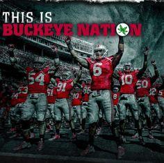 This is Buckeye Nation Ohio State Football, Ohio State Buckeyes, Football Roster, Ohio Stadium, Buckeyes Football, Best Football Team, Ohio State University, Iowa State, Football Spirit