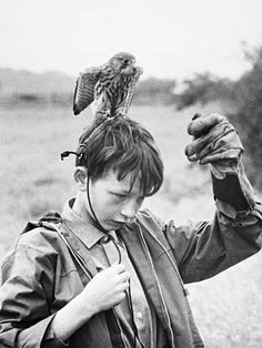 Kes Directed by Ken Loach and starring David Bradley. Kes Film, Old Photos, Vintage Photos, Comedy, Film Movie, Movies, Great Films, Film Stills, Portrait