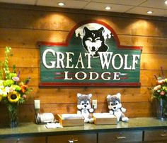 Money Saving Tips for the Great Wolf Lodge